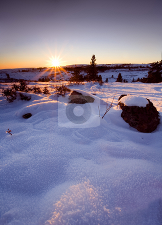 Desert Sunrise stock photo, A crisp and cold winter morning dawns atop a Eastern Washington Ridge top by Mike Dawson