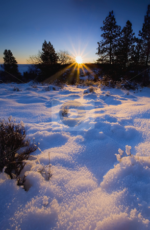 Winter Dawn stock photo, Dawn breaks over a snow covered meadow on a crisp winter morning by Mike Dawson