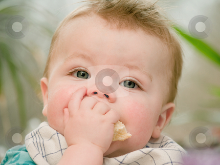 Portrait of a cute young baby boy eating stock photo, Portrait of a cute young baby boy  eating by Phillip Dyhr Hobbs