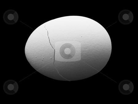 Cracked egg stock photo, Cracked egg shell on a black background by John Teeter