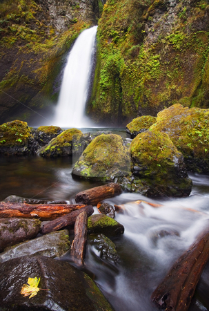 Wahclella stock photo, Wahclella Falls surges through a narrow gorge as it rushes down to the Columbia River by Mike Dawson