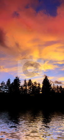 Red Clouds at Sunset Above Trees and Water on the Lake Tahoe Cal stock photo, Red clouds at sunset above tree silhouettes reflecting in the water on the Lake Tahoe California by Denis Radovanovic