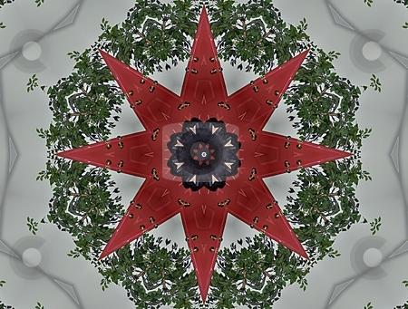 Christmas Mandala stock photo, Christmas Mandala, Background, Pattern, Texture, by Dazz Lee Photography
