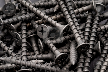 Macro of dark grey coarse thread drywall fastening screws stock photo, Macro of dark grey coarse thread drywall fastening screws by Vince Clements