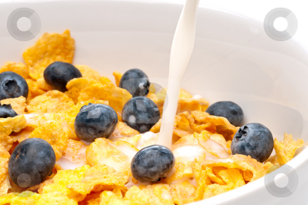 Pouring white milk into a bowl of breakfast flakes stock photo, Horizontal view of pouring white milk into a bowl of breakfast flakes with blueberries by Vince Clements