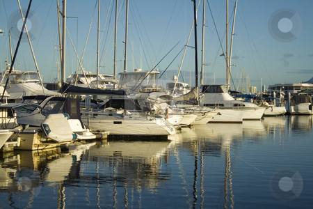 Marina Boats stock photo, Boats and yachts lined up at the marina in the early morning golden light. by Brett Mulcahy