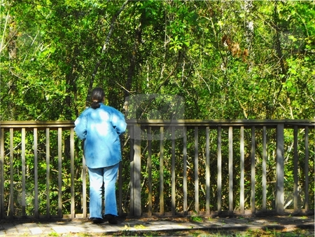 Woman looking into woods stock photo, A woman looking into the woods of the big thicket national preserve in hardin co. Texas by Robert Brown