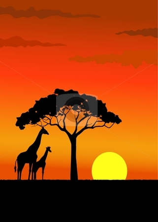 Sunset in Africa stock photo, Silhouette of wildlife Africa by Surya Zaidan