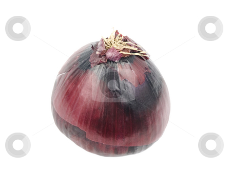 Onion on white stock photo, A Red Onion on white background by John Teeter