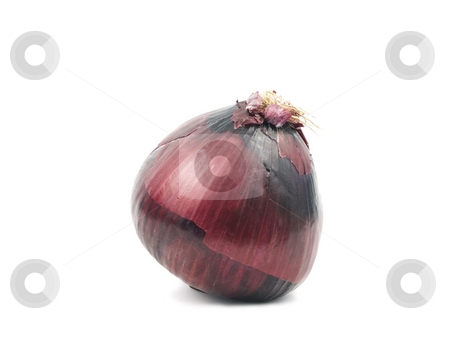 Onion on white stock photo, Red Onion on a white background with shadow by John Teeter
