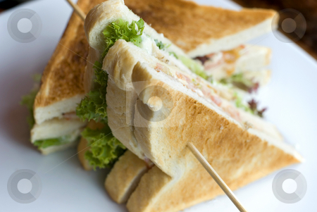 Club sandwich stock photo, A toasted club sandwich photographed with a narrow depth of field by Stephen Gibson