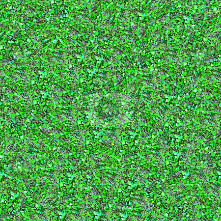 Ivy Seamless Pattern stock photo, Ivy Seamless Pattern - this image can be composed like tiles endlessly without visible lines between parts by Denis Radovanovic