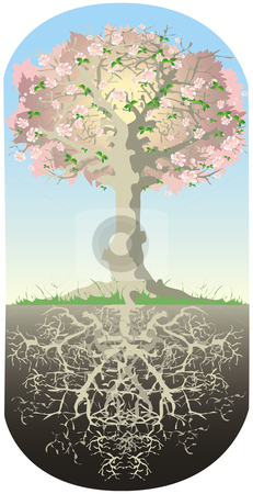 Tree and his roots stock vector clipart, Roots of tree are as deep as high tree is by Vanda Grigorovic