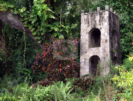 Stone tower in foliage on St. Kitts stock photo, An old rustic stone tower in the lush foliage of St. Kitts by Jill Reid