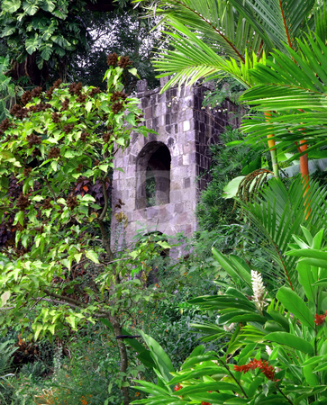 Stone tower in lush tropical foliage on St. Kitts stock photo, An old rustic stone tower in the lush green foliage of St. Kitts by Jill Reid