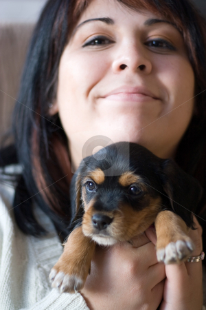 Woman Holding a Puppy stock photo, A young woman holding her cute mixed breed puppy - half beagle and half yorkshire terrier.  Shallow depth of field with stronger focus on the puppy. by Todd Arena