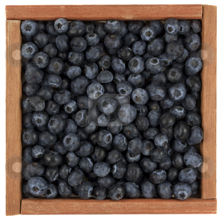 Blueberries in wooden box stock photo, Fresh blueberries in a rustic, wooden box or frame, isolated on white by Marek Uliasz