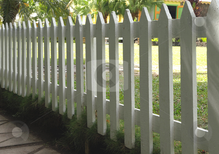 White painted picket fence stock photo, A white painted wooden picket fence along a garden by Jill Reid