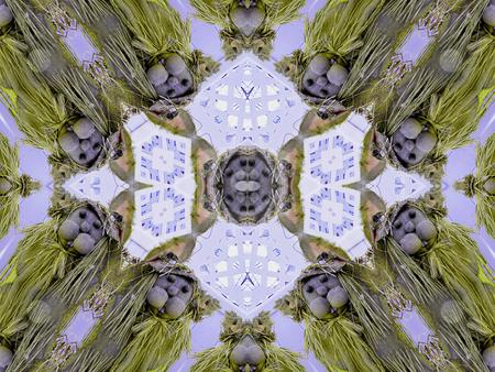 Rabbit Madness stock photo, Rabbit Madness - Background, Pattern, Texture, by Dazz Lee Photography