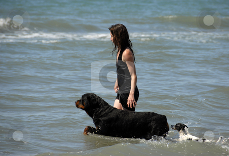 Woman and dogs on the sea stock photo, Woman and her two dogs on the sea by Bonzami Emmanuelle