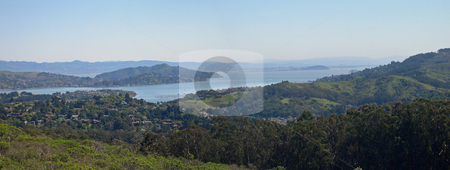 Panoramic view from Muir Woods stock photo, Panoramic view from Muir Woods by Jaime Pharr