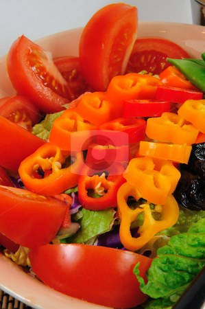 Dinner Salad stock photo, Lite salad with tomatoes and sweet peppers by Lynn Bendickson
