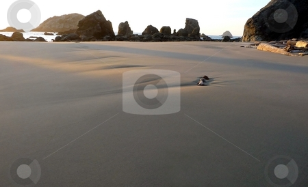 Sandy dunes on beach stock photo, Wide perspective of sandy dunes on an Oregon beach by Jill Reid
