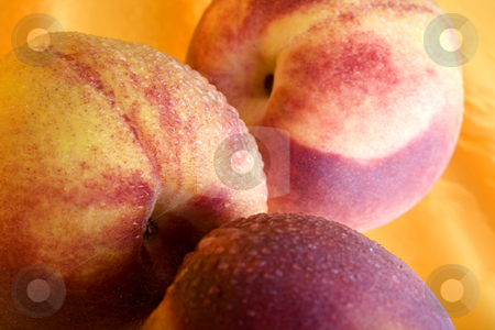 Luscious Peaches stock photo, Close up of peaches by iodrakon
