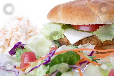 Veggie Burger stock photo, Medium studio shot of Veggie Burger, salad and cole slaw - selective focus on burger by iodrakon