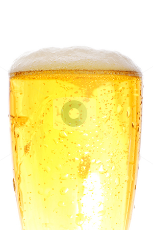 Medium shot of beer pint stock photo, Medium shot of beer pint - crisp gold colors by iodrakon