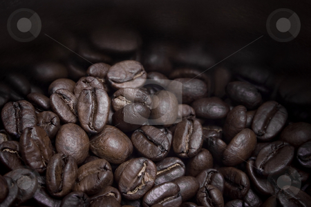 Coffee beans on can stock photo, Close-up of Coffee beans on can by iodrakon