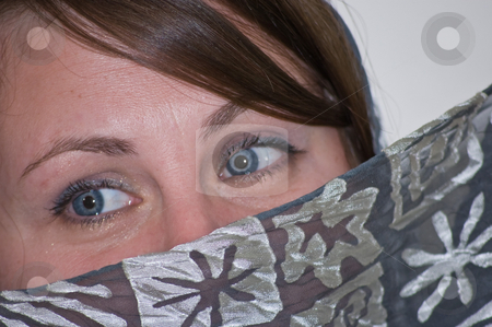 Closeup of Woman's Blue Eyes Near Gray Scarf stock photo, This closeup is of a Caucasian woman's beautiful blue eyes, adding to the mystery of this photo is a silky gray scarf. by Valerie Garner