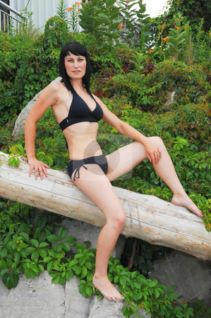 Pretty girl in bikini. stock photo, Young beautiful woman in an black bikini sitting on a old tree with shrubs in the background. by Horst Petzold