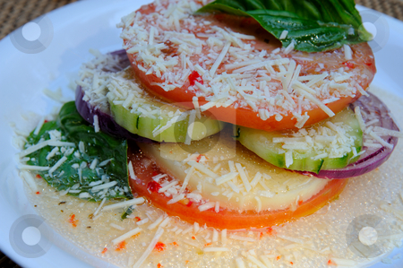 Sliced Vegetable And Cheese Salad stock photo, Tomatoes, cucumber, red onion and mozzarella cheese slices topped with italian dressing, basil and asiago cheese by Lynn Bendickson