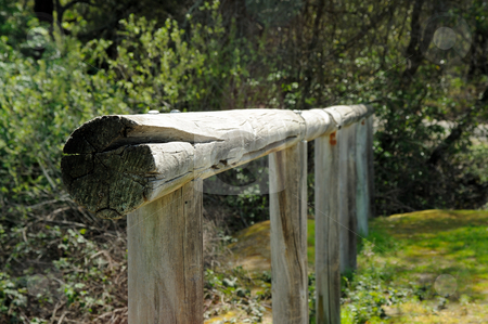 Old Western Horse Hitching Post stock photo, Old wooden horse hitching post along an equestrian trail by Lynn Bendickson