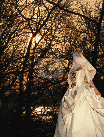 Mystery Bride stock photo, Veiled Bride walking through Forest by Miguel Dominguez