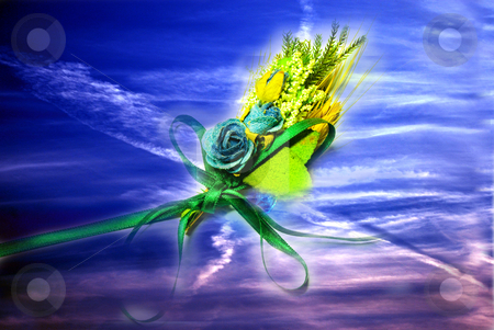 Dry up flowers stock photo, Bouquet of beauty in the sky by Alexey Rumyantsev