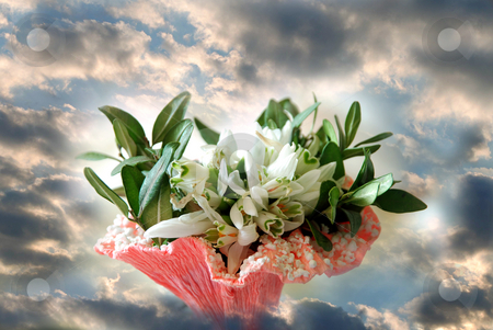 Spring flowers stock photo, Bouquet of snowdrops in the sky by Alexey Rumyantsev