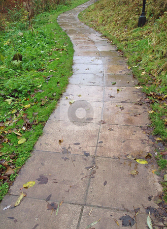 Stone pathway with grass    stock photo, Stone pathway with grass by Jaime Pharr