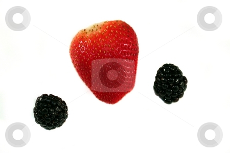 Strawberry Blackberry stock photo, Red strawberry with blackberries on white or light background. by Henrik Lehnerer