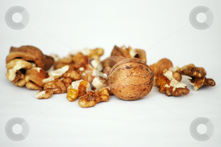 Nuts stock photo,  by Sarka