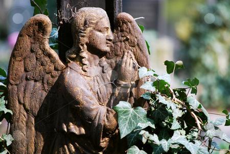 Angel stock photo,  by Sarka