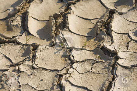 Dry Land stock photo, Dry land cracked with out water by Paulo Resende