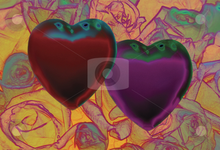 Love like Satin stock photo, 2 Hearts over Field of roses by Miguel Dominguez
