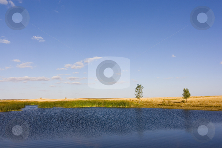 Lonely lake stock photo, Rural image of a lonely small lake by Ivan Montero