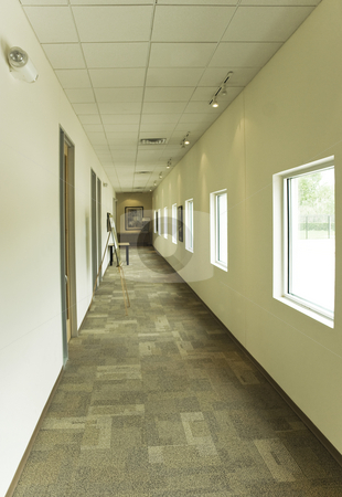 Office Hallway stock photo, A office building hallway next to some large glass windows by Kevin Tietz