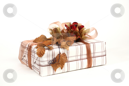 Christmas present stock photo, Christmas present with beautiful natural decoration by Tom P.