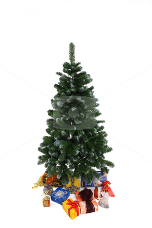 Christmas tree stock photo, Green christmas tree with amount of presents by Tom P.