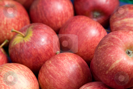 Apples stock photo,  by Stefan Franz