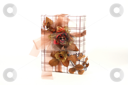 Christmas present stock photo, Christmas present with beautiful natural decoration by Tom Prokop